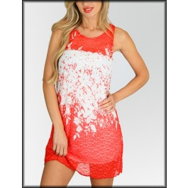 Devsters One-of-a-kind Lace Dress